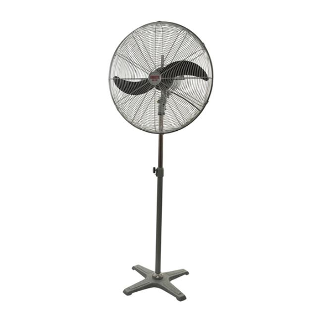 Where to find Fan 24  Pedestal in Geelong